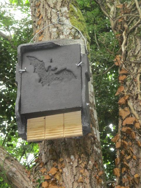 A bat box with a sign for the bats