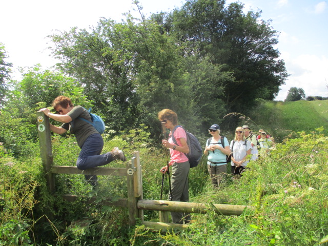 After complaining about trying to cross the fence (on right of the photo) I realise there is a hidden stile!