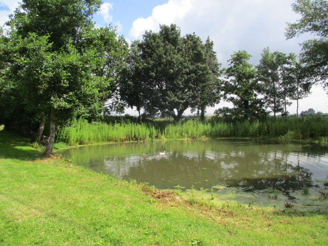 And a charming duck pond