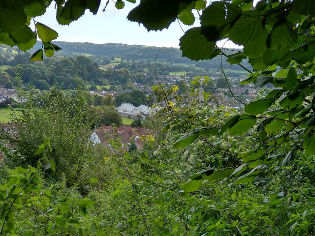 Along the edge of the woods to Dursley